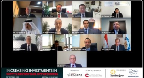 Increasing Investments in Egypt's Brownfields Opportunities Roundtable