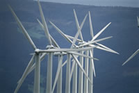 Electricity Ministry Finalizes Suez Wind Power Project