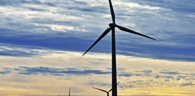 Egypt, Denmark Cooperate on Wind Energy