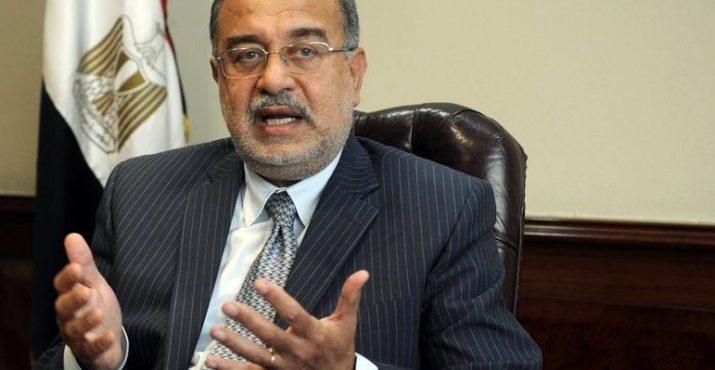 Egypt's PM Talks Expansion Plans with Apache