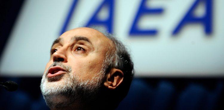 Iran Prefers 50-100 Megawatt Nuclear Reactors