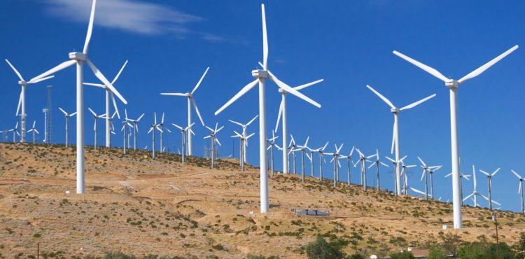 Egypt's Wind Farm to Produce 7110MW