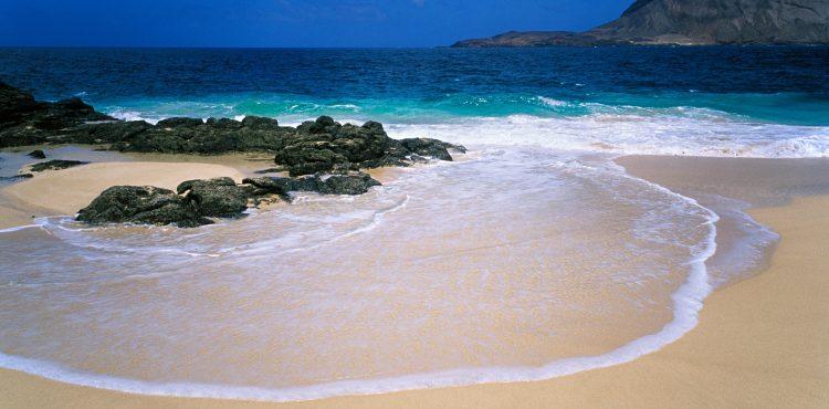 Spain Orders Environmental Emergency Alert Over Oil Spill Near Canary Islands