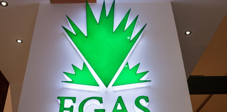 EGAS to Link Noras, Northern Alexandria and Zohr