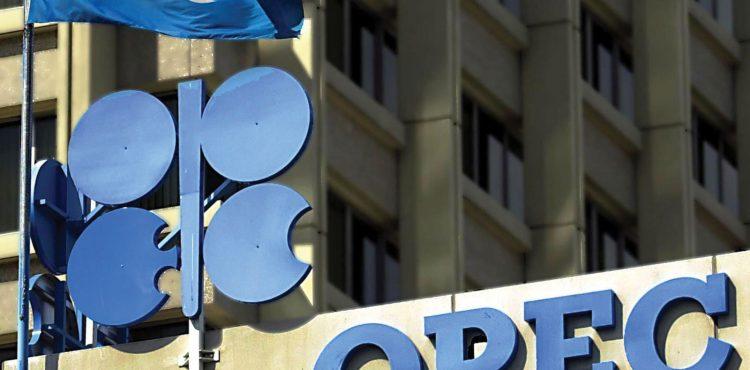 Guinea Awaits Decision on OPEC Membership Bid