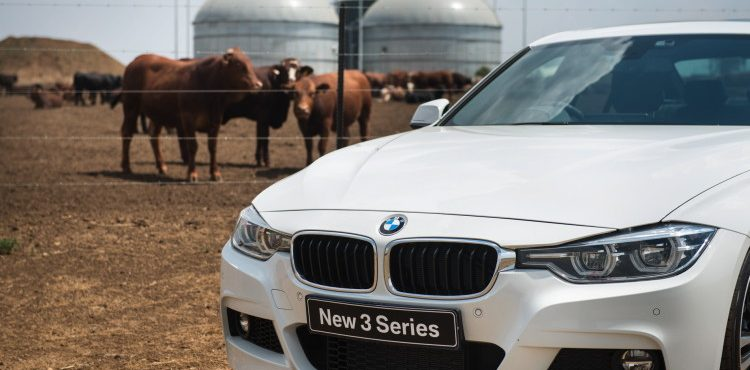 Cow Dung Powers BMW in South Africa Amidst Blackouts