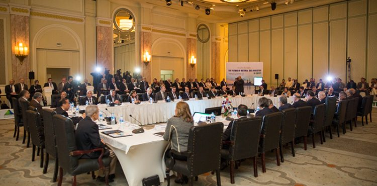 EXECUTIVE ROUNDTABLE: The Future of Natural Gas in Egypt