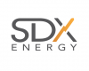 SDX Announces New Commercial Discovery  at Sobhi Well