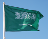 Saudi Arabia to Reduce Emissions, Diversify Energy Mix