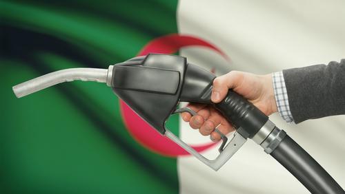Algeria, Guinea Sign MoU in Gas Sector