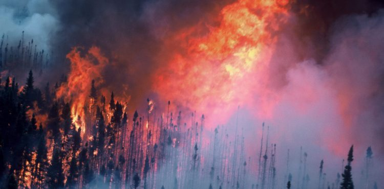 Huge Wildfire Disrupts Canada Oil Production