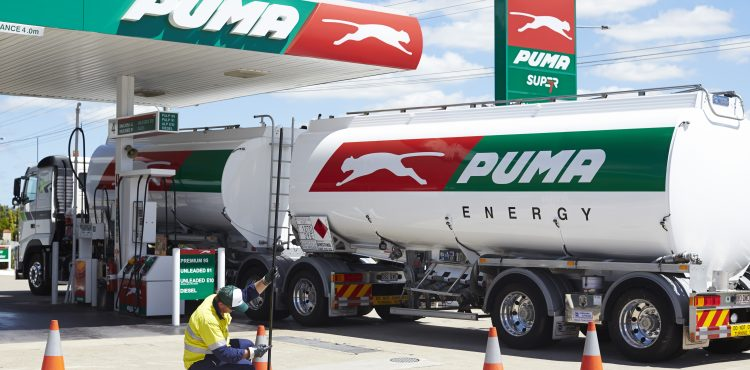 Puma Energy Tanzania Reports Loses over Oil Thefts