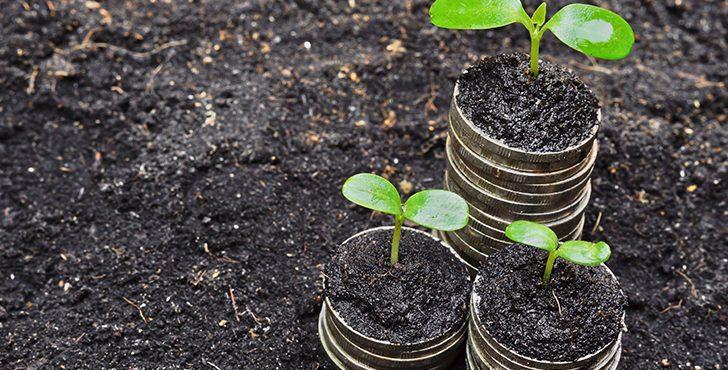 Where Environmental CSR and Profitability Intersect