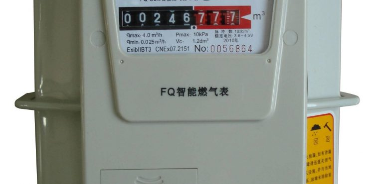 EGPC, NBE Agreed on Gas Meters Installment