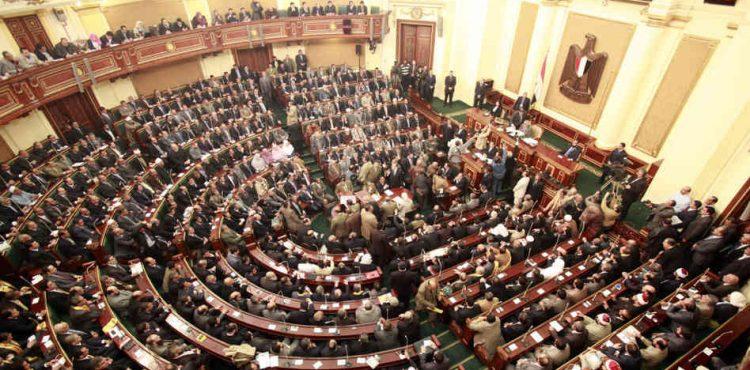 El Molla Highlights Achievements Before House of Representatives