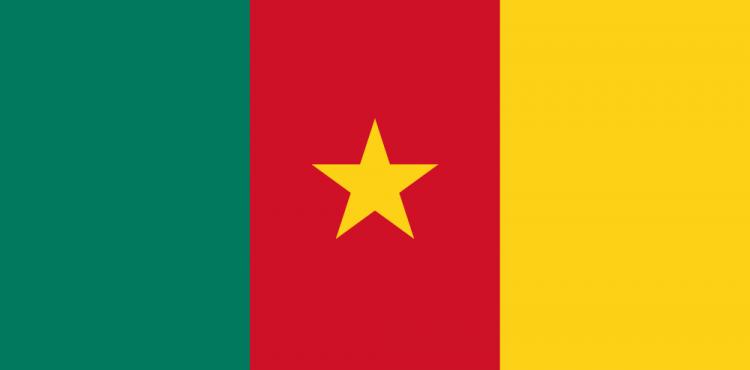 VOG's Cameroonian Assets Earned $23.6m in H1/2016
