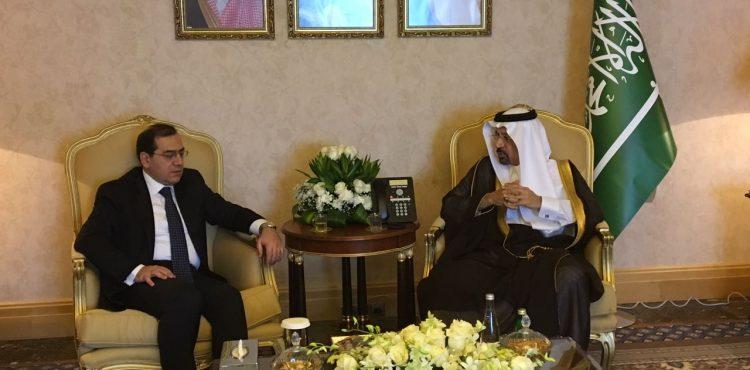 Egypt, Saudi Arabia Talked Mineral Cooperation