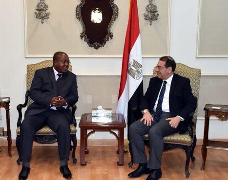 El Molla Meets Cameroon's Minister of MINMIDT