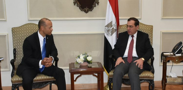 El Molla Discusses Cooperation with President of Fluor Energy