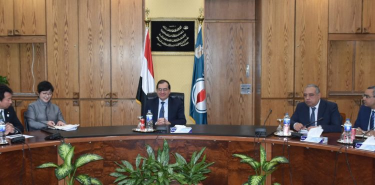 Egypt, Japan Discuss Bilateral Cooperation