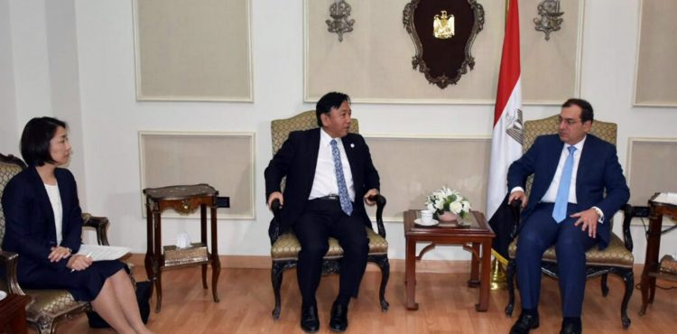 Egypt, Japan Discuss Petrochemical Cooperation