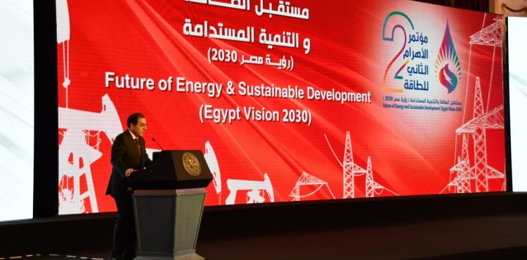 Egypt Signs 63 Petroleum Agreements in Four Years: El Molla