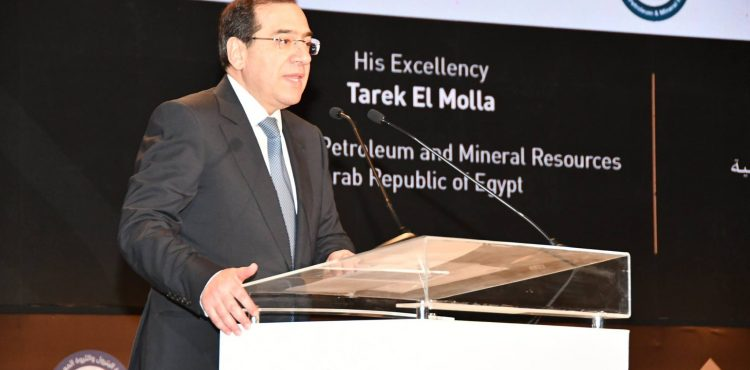 Several MoUs Signed During EGYPS 2019