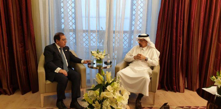 Egypt, Saudi Arabia Discuss Oil, Gas Opportunities