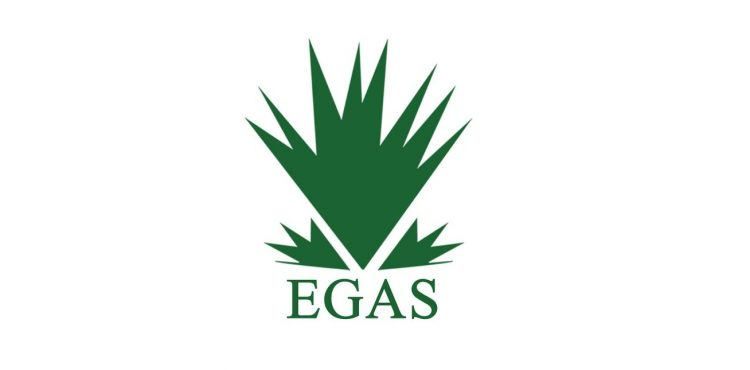 EGAS to Boost LNG Exports through Idku