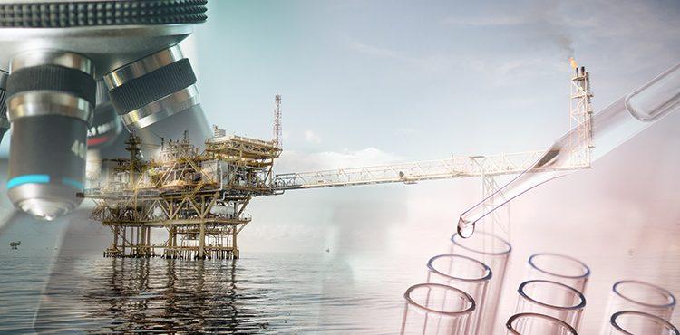 Case Study for Best Hydrogen Management in Midor and Mostorod Refineries
