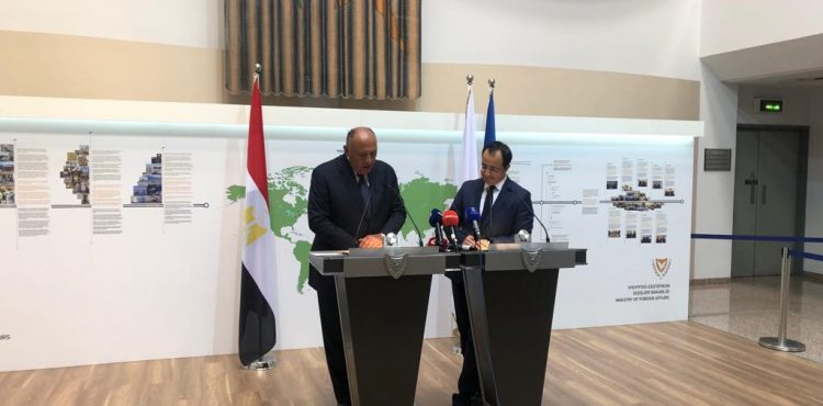 Shoukry Discusses Energy Cooperation in Cyprus