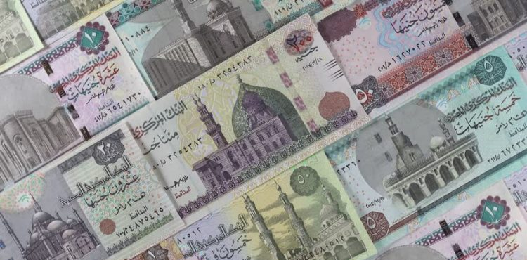 Egypt To Cut Petroleum Products Subsidies by 47%