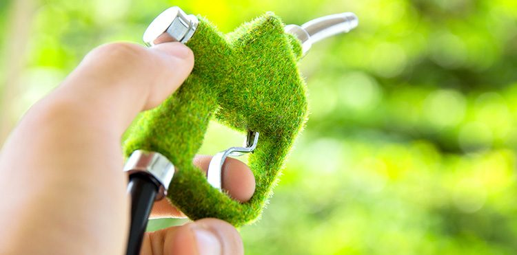 The Future of Alternative Fuel Vehicles in Egypt