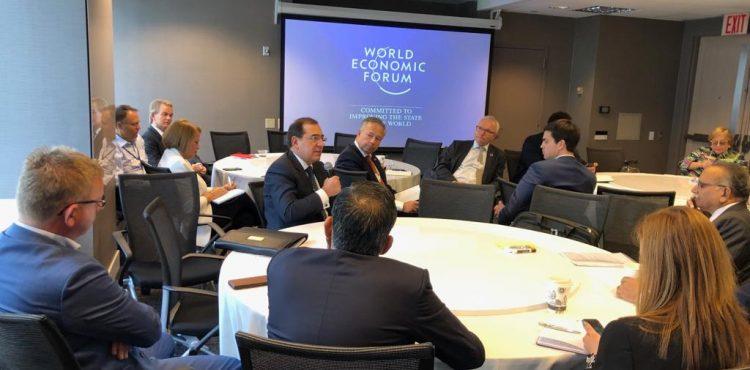 El Molla Reviews Petroleum Strategy at World Economic Forum