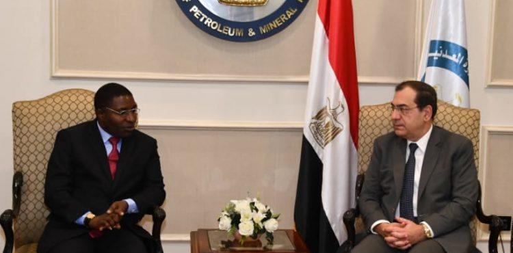 Egypt's Petroleum Ministry Seeks New Opportunities in Tanzanian Market