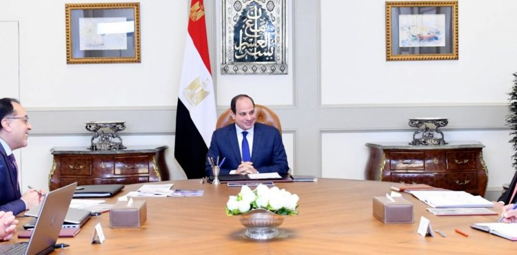 El Sisi Urges Modernizing Petrochemicals Industry