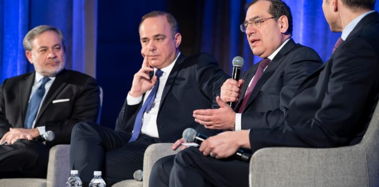 El Molla Highlights Egypt's Petroleum Industry in Ministerial Panel