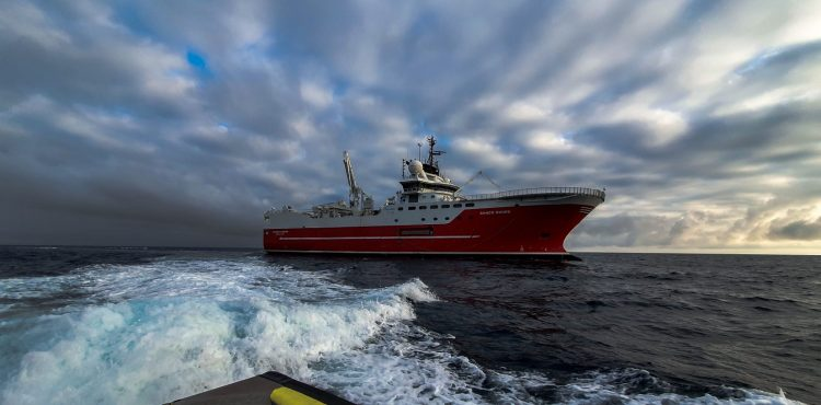Neptune Completes First OBN Seismic Survey in Egypt