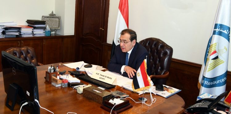 APPO Approves Egypt's Suggestion for Promoting African Petroleum Industry