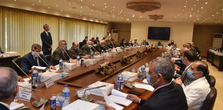 Petroleum Geographical Subcommittees Expand Across Egypt