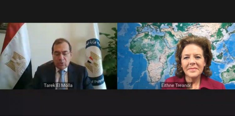 EGYPS Webinar Highlights EMGF's Statute Signage