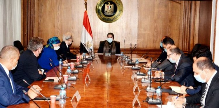 Egypt, Japan Mull Cooperation to Expand Reliance on NGV