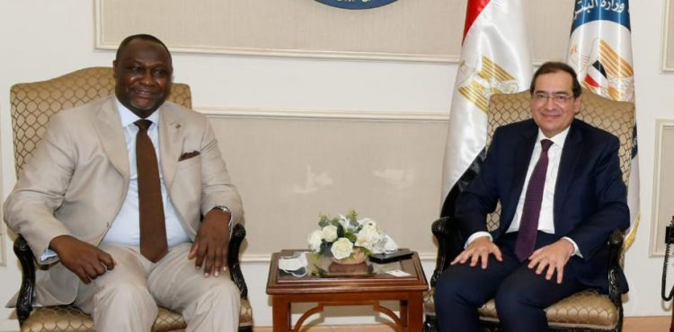 Egypt, AFC, Explore Petroleum Cooperation Opportunities