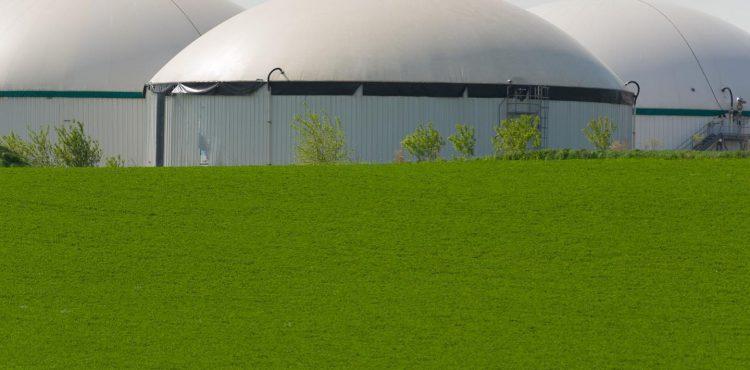 Brightmark, Chevron Expand Cooperation on Dairy Biomethane