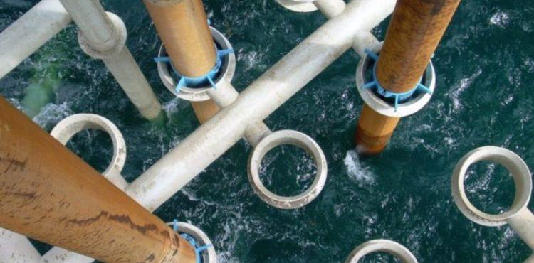 Aquaterra Wins Contract for Establishing Sea Swift Platform in Angola